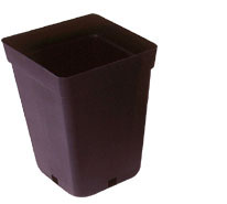 15cm Square Tall Pot